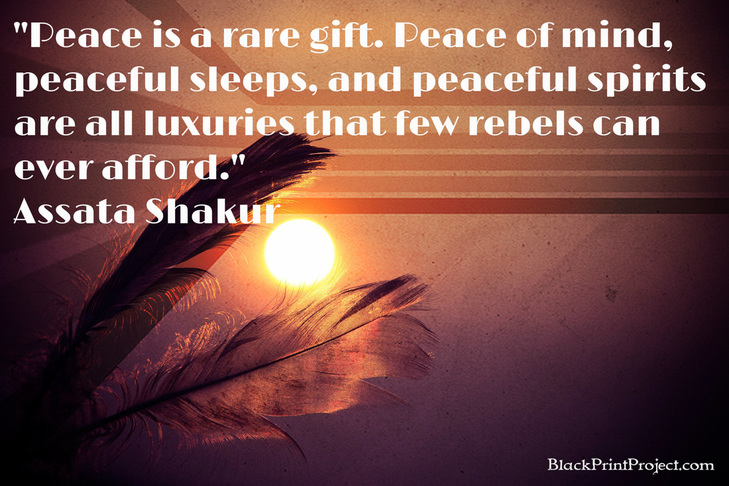 Peace is a rare gift. Peace of mind, peaceful sleeps, and peaceful spirits are all luxuries that few rebels can ever afford.~  Assata Shakur