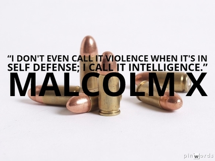 I don't even call it violence when it's in self defense; I call it intelligence.